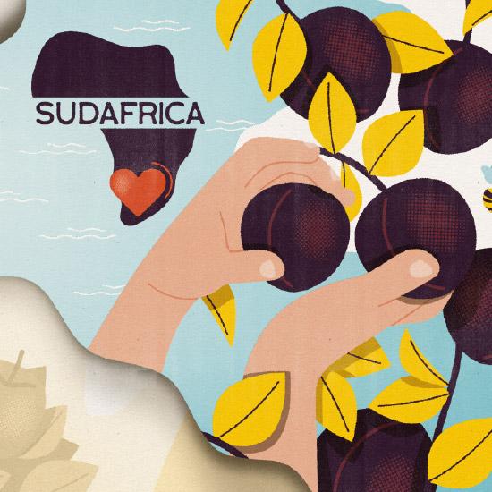 Il profumo del sole africano